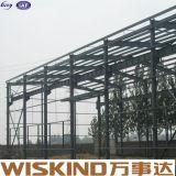 Nuevo espacio de alta calidad gran marco de acero estructural de la casa de pollo