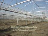 Chambre verte de tunnel de Multi-Envergure avec la qualité