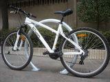 Cremalheira galvanizada Quente-Mergulhada ao ar livre da bicicleta do círculo