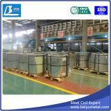Lamiera di acciaio galvanizzata del ferro in bobina da Shandong