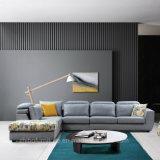 Justierbares Coener Gewebe-Sofa eingestellt für Hauptmöbel