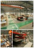 Chambre de la machine Gearless Vvvf passager d'observation de l'élévateur en usine du fabricant Huzhou Mr