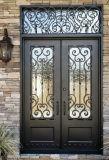 고대 디자인 주문 안전 두 배 단철 입구 문