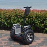 Ecorider van Autoped van het Golf van de Batterij 72V 4000W van de Weg de Dubbele Elektrische
