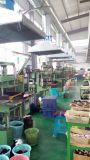 Mémoires tampons en caoutchouc de silicones, joint squelettique de constructeur de province de Hebei