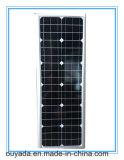 45wp 태양 전지판 힘을%s 가진 옥외 안마당 태양 LED 점화 30W를 위해