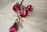 La soie artificielle et Magnolia en plastique