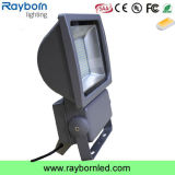 250ワットMetal Halide Lamps Equal 100 Watt LED Flood Light 240 Volt Meanwell Driver 5 Year Warranty 130lm /W