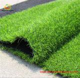[س] شهادة عشب اصطناعيّة لأنّ يرتّب ووقت فراغ