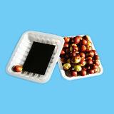 Plastiktellersegment des Qualitätsgarantie-Wegwerfnahrungsmittelgrad-pp. für Fleisch-essbare Meerestiere und Frucht