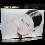 超細いLEDのライトボックスを広告するショッピングモール
