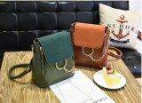 Borse Chain della signora Handbag Nice Designer Sepcial di modo (WDL0135)