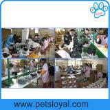 На заводе автоматической подачи ПЭТ собак собак транспортера продуктов