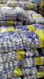 Aglio bianco d'imballaggio del piccolo sacchetto della maglia da Jinxiang