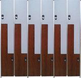 Hochdruck-lamellenförmig angeordnete elektronische Verschlüsse für Schließfächer