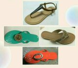 Сандалии женщин Seabeach/тапочки, сандалии способа/тапочки, 50000pairs, USD1/Pairs