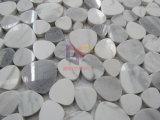 Mattonelle di mosaico di marmo bianche di pietra del ciottolo per la parete ed il pavimento (CFS1176)