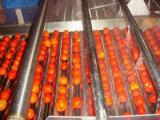 熱い販売の果物と野菜の洗濯機の空気泡洗濯機