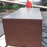 Madera fenólica Shuttering hecha frente película del álamo del pegamento de Brown (6X1250X2500m m)