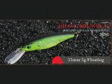 Attrait en plastique de pêche (vairon de plongée 55mm flottant)