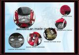 새로운 Produced Cargo Tricycle/150cc Tricycle