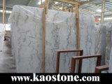 Calacatta自然な磨かれたカラーラの大理石の磨かれたタイル、イタリアの白の大理石