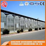 De commerciële Serre van het Blad van het Polycarbonaat van het Roestvrij staal voor Fruit