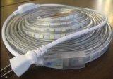 Éclairage LED DEL de la lumière de bande d'ETL DEL 220V/110V