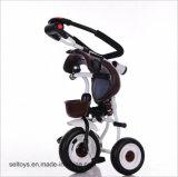 Três crianças de envio do lado da roda/bebê de triciclo
