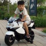 Velomotor elétrico das crianças quentes das rodas grandes da venda dois de China