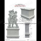 Het hand-gesneden Beeldhouwwerk van Metrix Carrara voor Decoratie Mej.-543 van het Huis