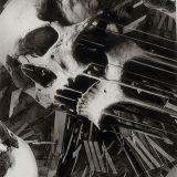 Vente chaude Tsautop 0,5 m/1m de largeur du crâne Patterns Film hydrographique Films d'impression Transfert d'eau Hydro Tskr9055 de film d'impression