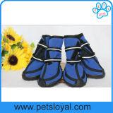 El media impermeable del verano al perro de animal doméstico grande calza cargadores del programa inicial del perro