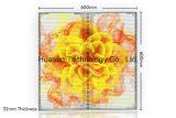 Tela transparente P12 P16 P18 do diodo emissor de luz para os Transporte-Olhos video de vidro de Huasun da parede do diodo emissor de luz de Windows