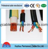 600V aislamiento de PVC Revestimiento de PVC flexible Cubierta de Nylon Conductor de cobre del cable Tsj