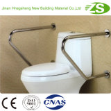 浴室の障害がある人のための適切な洗面所のグラブ棒