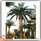 Décoration de plein air en plastique faux Date artificielle palm tree