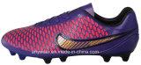 Botas de fútbol de los hombres atléticos Deportes Zapatos de fútbol (815-5460)