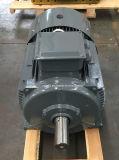 最も普及した最近Sheelの鋼鉄電動機を設計しなさい