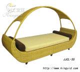 Напольный стул салона Chasie, стул софы пляжа Lounger Sun (JJCL-30)