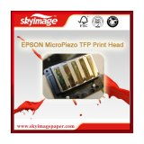 Base Água Micro Epson sirene piezelétrica PTF para Cabeça de Impressão Epson Impressoras Série F