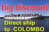 Nansha 광저우에서 Colombo에 큰 할인 출하 근수 서비스