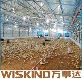Vorfabriziertes Stahlkonstruktion-Huhn verschüttete mit Stahlspalte-Träger