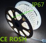 고전압 IP67는 유연한 LED 리본 빛을 방수 처리한다