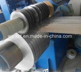 ASTM/AISI/JIS/SUSのステンレス鋼301/304/316/430/201のストリップ