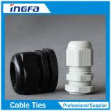 Presse-étoupe de câble en laiton en métal imperméable à l'eau direct de courant électrique de fournisseur Pg9