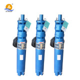 깊은 Well Bore Hole Multistage High Pressure Submersible Water Pump 60Hz