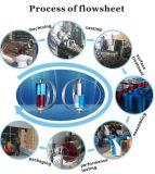 De Chinese 600W Turbogenerator van de Wind van Maglev van de As van het Gebruik van het Huis Verticale