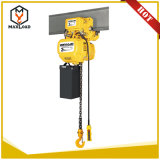 Mini gru Chain elettrica elettrica portatile della gru 1000kg 220V
