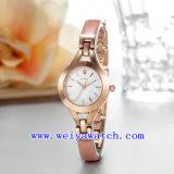 Relógio de senhoras luxuoso da liga feita sob encomenda do relógio do tipo (WY-041A)